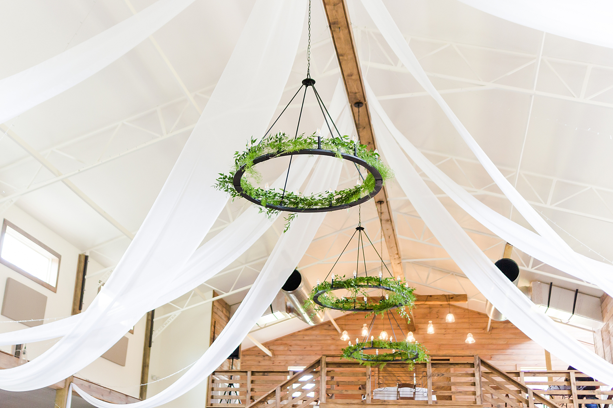 greenery hanging from ceiling at Izenstone