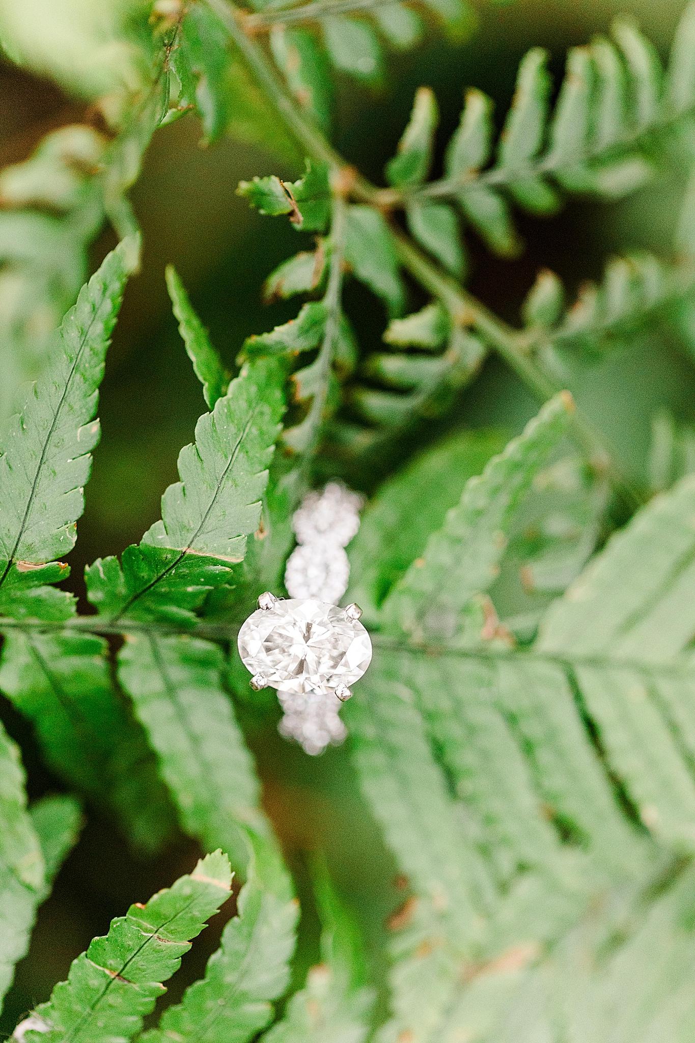 engagement ring on ferns during Orange Street Pier engagement photos