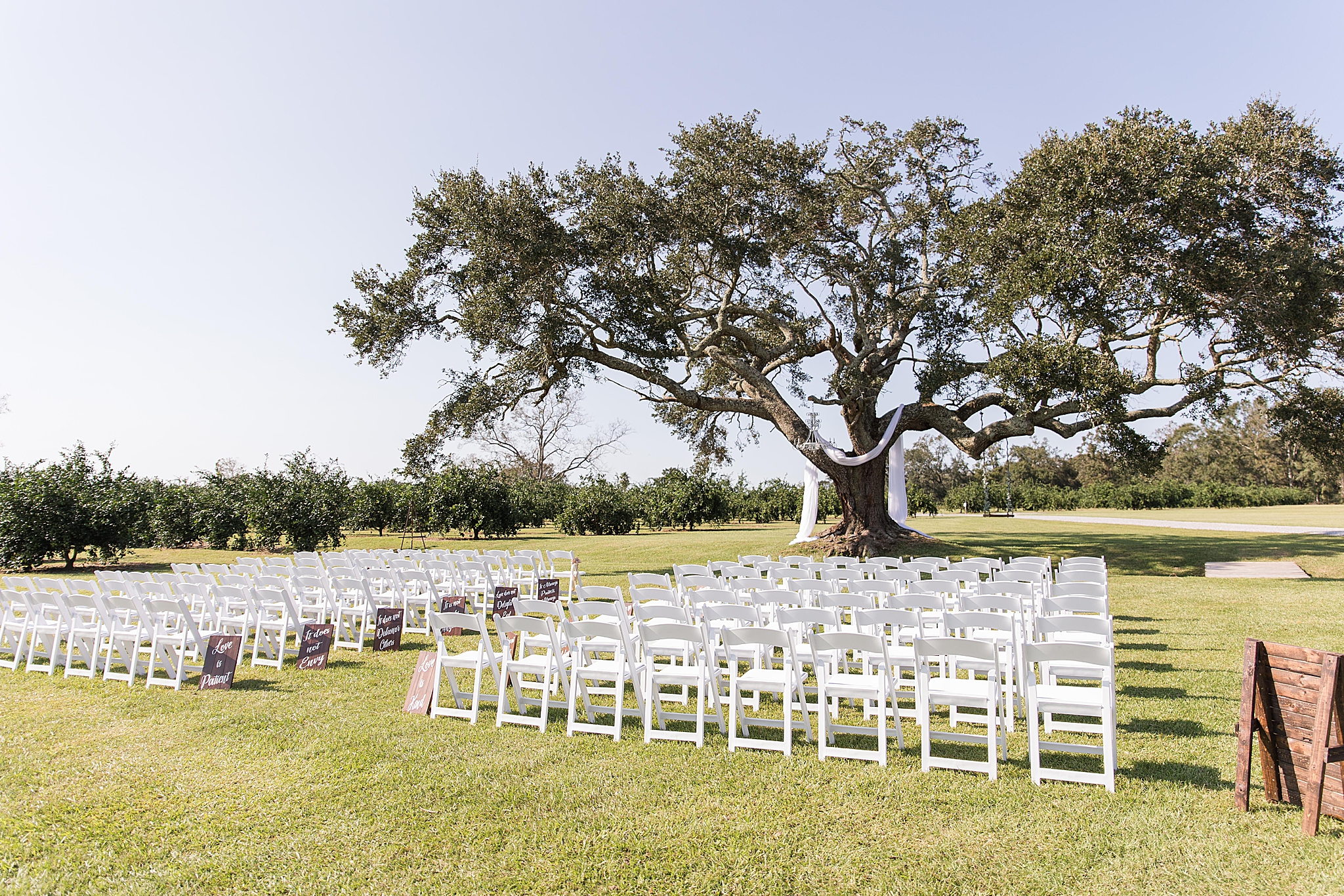 outdoor ceremony by tree at Orchard at Hayes Farm