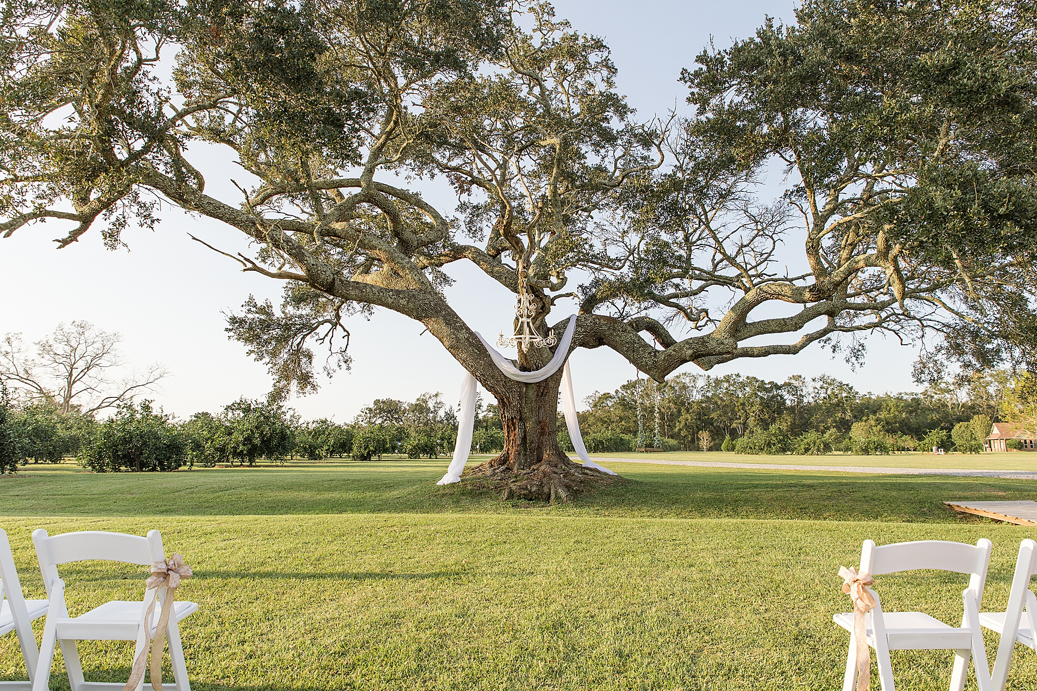 wedding ceremony site at The Orchard at Hayes Farm