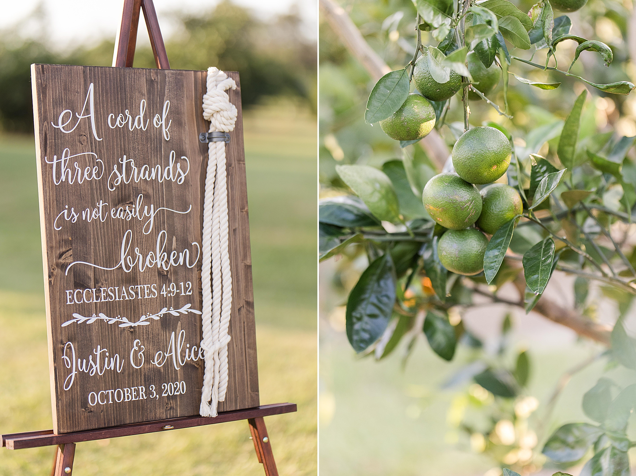 details for rustic outdoor wedding at the Orchard at Hayes Farm