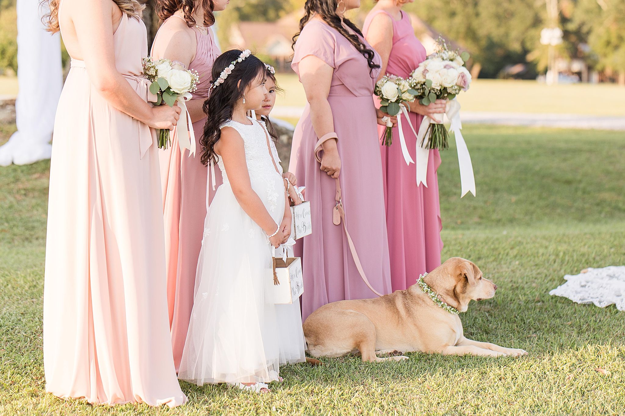dog sits with bridesmaids during AL wedding ceremony
