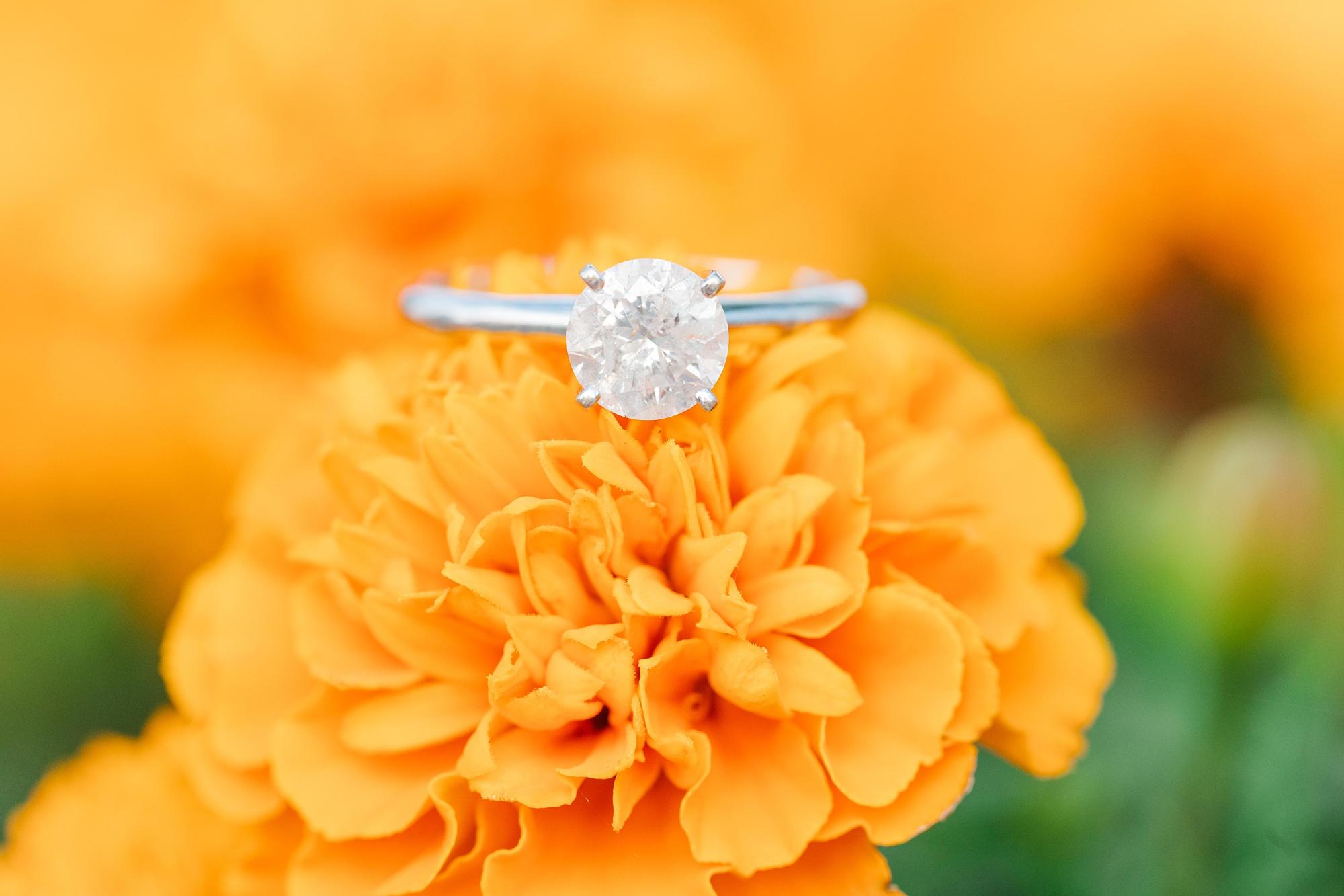 engagement ring on orange flower in Alabama town