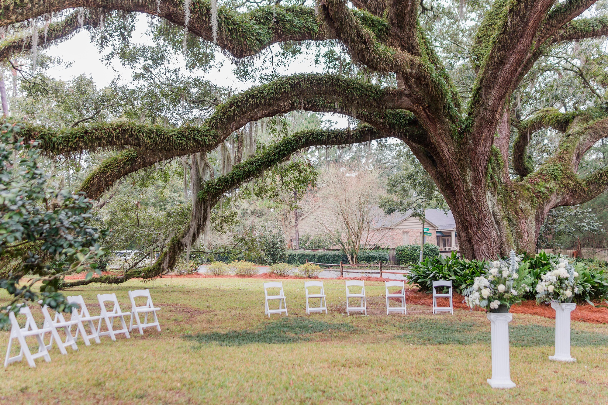 intimate Springhill wedding ceremony in front yard by tree with Spanish moss