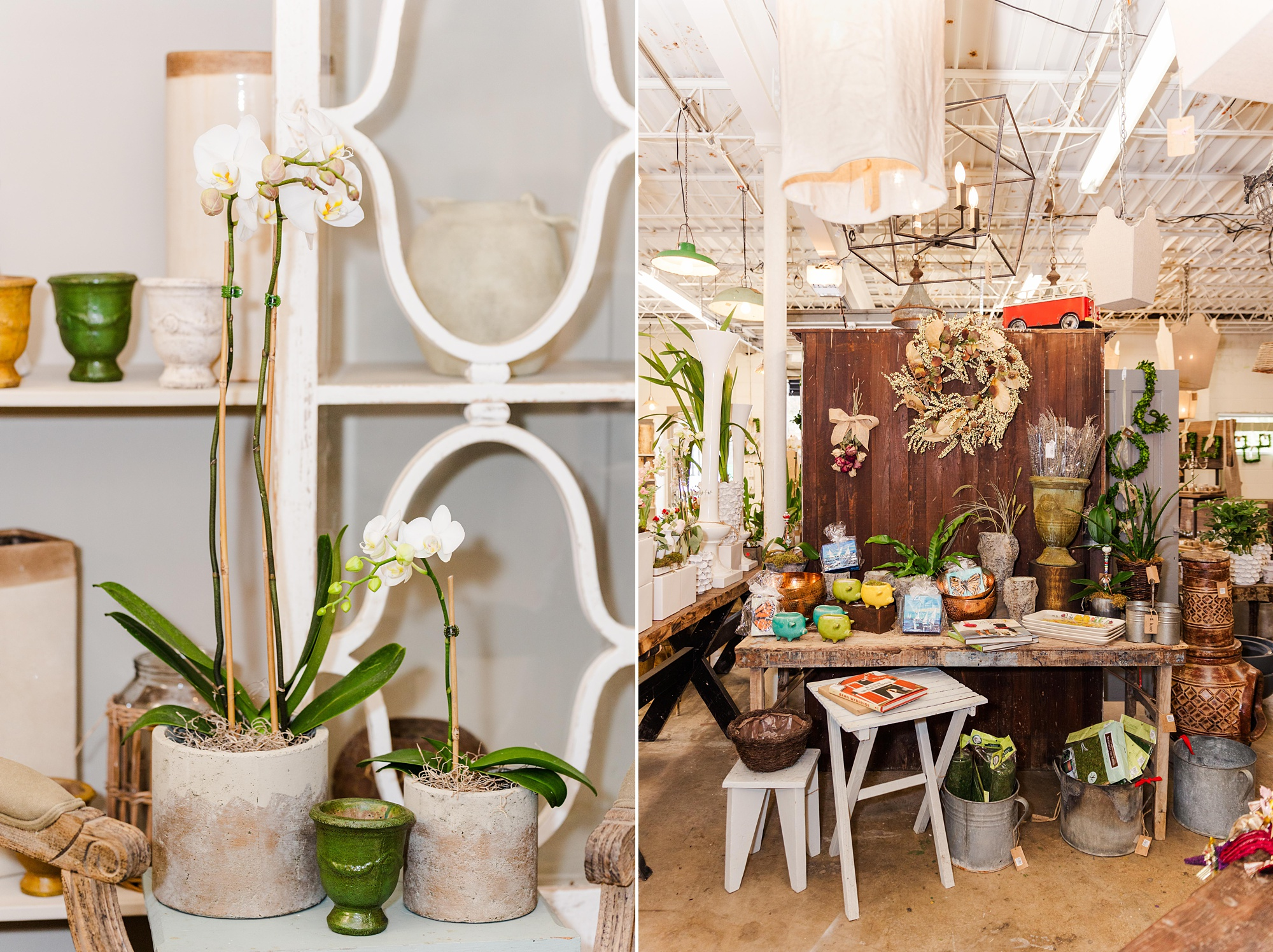 inside LUSH, home and gardens store in Mobile AL