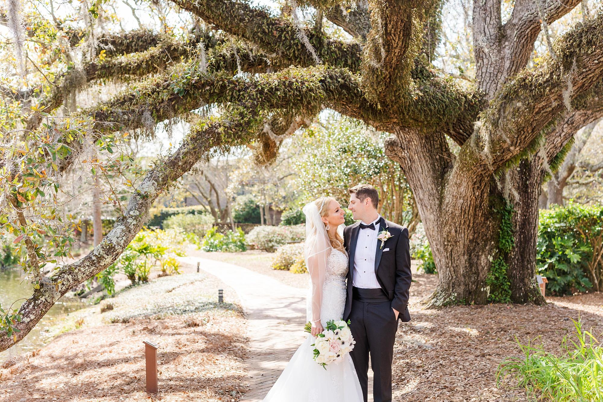 Alabama wedding portraits under tree with Spanish moss